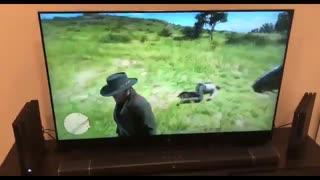 RDR2 Wild Animals #2