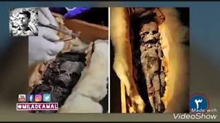 دلایل حقیقی که موجودیت موجودات فضایی در مصر باستان را صد درصد ثابت میکنید.  #