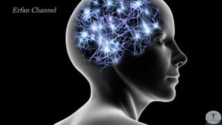 آیا شما از هر دو نیم کرهٔ مغزتان استفاده میکنید؟(بسیار جالب)