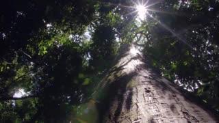 مستند سیارۀ زمین Planet Earth فصل اول قسمت 8  HD