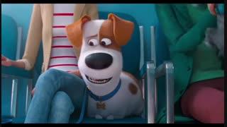 تریلر انیمیشن The Secret Life Of Pets 2