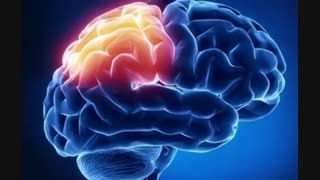 یه مطلب جالب در مورد مغز.برو کپشن.نظر یادت نرههه