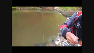 بهترین طعمه ماهیگیری با قلاب (توضیحات زیادی در وبلاگم در مورد طعمه های ماهیگیری وجود دارد)