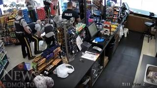 دزدهای ناموفق