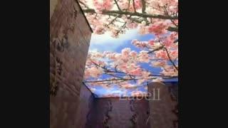 سقف چاپی لابل