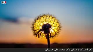 دکلمه شعر قاصدک (با صدای دکتر محمد علی حسینیان)