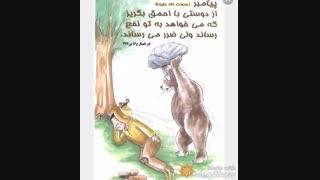 دوستی با احمق …❇… پیامبر (ص)