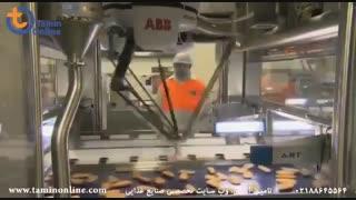 خط بسته بندی شنیسل ماهی