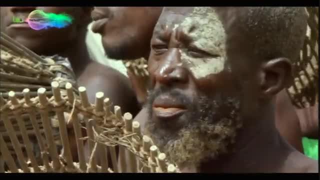 سیاره انسانها : نبرد یک قبیله برای صید ماهی در برکهای کوچک (جشنواره صید ماهی)
