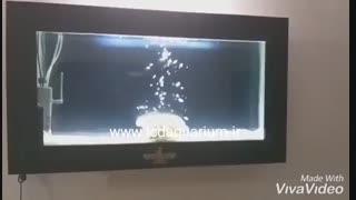 آکواریوم های هوشمند