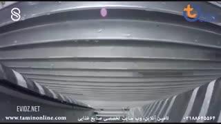 خط سورتینگ و بسته بندی ماهی