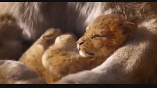 فیلم لایو اکشن Lion King
