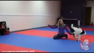 رقص زیبای سگ بهمراه مربی اش؟!!!