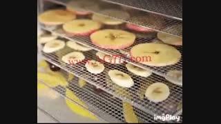 دستگاه خشک کن میوه
