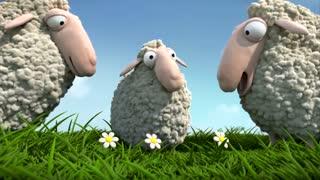 انیمیشن کوتاه گوسفند