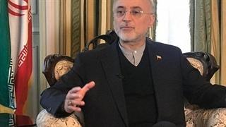 صالحی: فشار اقتصادی غوغا میکند؛ حقوقم به عنوان استاد دانشگاه به ۷۰۰ دلار در ماه رسیده