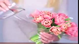 آموزش دسته گل لاله