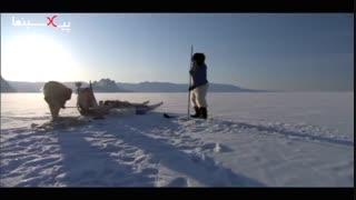 مستند سیاره انسانها : شکار کوسه در زیر یخ توسط اسکیمو ها در گرین لند