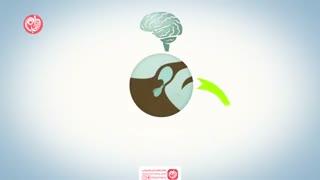 سیکل قاعدگی چگونه اتفاق می افتد؟
