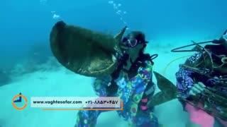 جشنواره موسیقی زیر آب در آمریکا