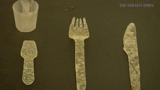 قاشق و چنگالهای خوردنی