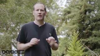 تکنیک های خلاقانه در عکاسی(خلاقیت در عکاسی از گیاهان)