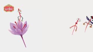 زعفران بهرامن- bahramansaffron- انیمیشن