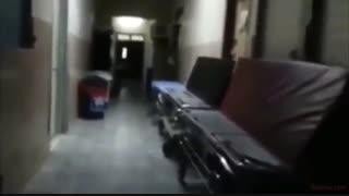 فیلم ترسناک : وقتی همه چیز ترسناک است