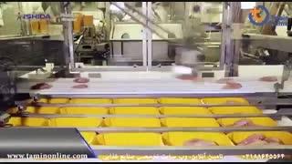 خط بسته بندی مرغ قطعه شده بدون دخالت دست
