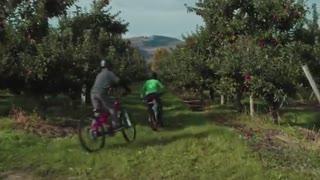 فیلم دوچرخه سواری دو پسر نوجوان