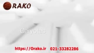 نمونه کار دیوارپوش اراکو  33282286-021