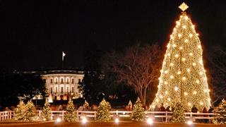 کریسمس در واشنگتن