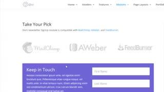 معرفی ماژول های divider و  Email Option در قالب حرفه ای Divi