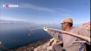 مستند بی بی سی سیاره انسان ها : شکار ماهیگیرک مهاجر و تامین غذای زمستان