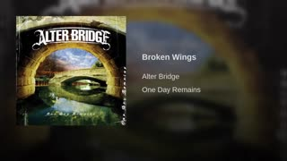 Broken Wings-)