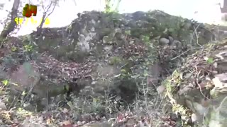 قلعه تنکا