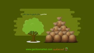 Planting Walnuts Business کسب و کار کاشت گردو