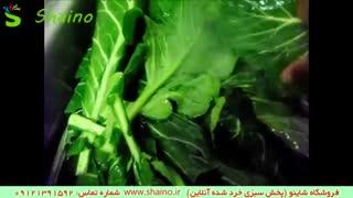 شستن سبزی خرد شده فروشگاه شاینو شماره تماس:09121391592