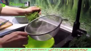 عکس سبزی خرد شد   فروشگاه شاینو شماره تماس: 09121391592