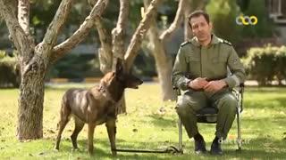 سگهای پلیس ایران