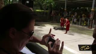 بزرگ ترین و هیجان انگیز ترین باغ وحش پوکت تایلند