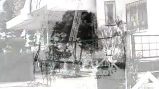 فروش 7000 متر باغ ویلا در یوسف آباد ملارد کد 1464