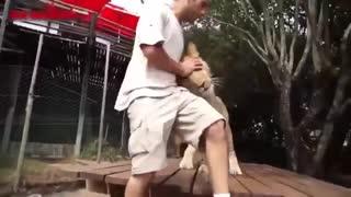 اُنس حیوانات با بشر
