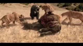 حیوانات قبل از عصر یخبندان