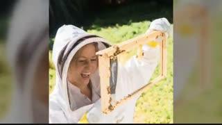 خانومای زنبوردار
