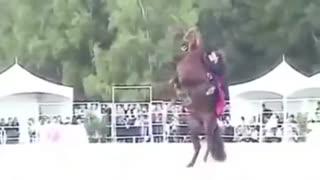 اسب رقاص ودخترعرب