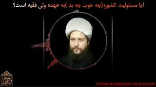 آیا رهبری مقصر است؟! - حجت الاسلام محمد جواد نوروزی نصرت