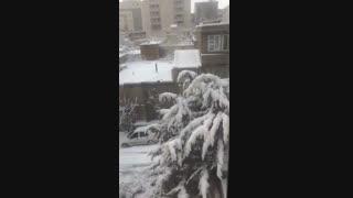 برف صبح در شهرمون رو به روی خونمون