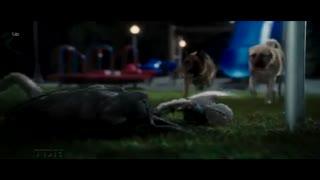 انیمیشن گربهها و سگها: انتقام از کیتی گالور با دوبله فارسی