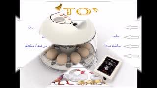 دستگاه جوجه کشی و تخم نطفه دار تضمینی